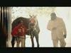Rick Ross - Magnificent