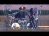 Korn - Let the guilt go (Crop Circle version)