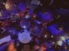 Sonata Arctica - The Last Amazing Grays (Live)