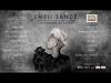 Emeli Sande - Our Version Of Events (Album Sampler)