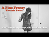 A Fine Frenzy - Electric Twist (Lyrics Video)
