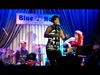 Candice Anitra at The Blue Note - Big Tree