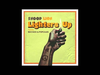 Snoop Lion - Lighters Up (feat. Mike Posner)