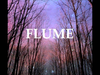 Flume - Sleepless (feat. Jezzabell Doran)