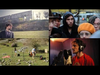 eildentroeilfuorieilbox84 - Tutti i video CONTEMPORANEAMENTE