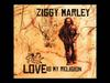 Ziggy Marley - Black Cat | Love Is My Religion