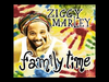 Ziggy Marley - Family Time (feat. Judah Marley | Family Time)