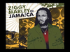Jimmy Cliff - You Can Get It If You Really Want | Ziggy Marley In Jamaica