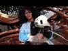 Jody Watley - Panda Tour