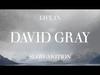 David Gray - The One I Love