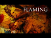 Dark tranquillity - With the flaming shades of fall