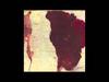 Gotye - A Distinctive Sound