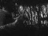 Negramaro - Solo