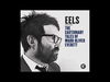 EELS - Mistakes Of My Youth - Audio Stream