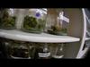 Kid Ink - Ms Jane (Official Smoke Video)