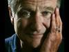 Joseph Arthur - Robin (A Tribute to Robin Williams 1951-2014)