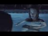 Bob Schneider - Swimming In The Sea (OFFICIAL)