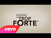 Maurane - Trop forte (Video Lyrics)
