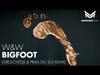 W&W - Bigfoot (GirlsLoveDJs & Praia Del Sol Remix)