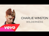 Charlie Winston - Wilderness (Cover Art)