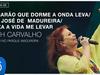 Beth Carvalho - Camarão que Dorme.../S. José de Madureira/Deixa a... (Ao Vivo no Parque Madureira)
