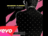 Brandon Flowers - I Can Change (Michael Brun Remix / Audio)