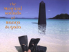Banco de Gaia - No Rain (Live 2001)