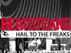 Beatsteaks - Hail to the Freaks