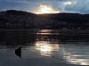 Doğa Sesleri - Reflections of Sapanca Lake
