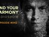 Andrew Rayel - Find Your Harmony Radioshow #042