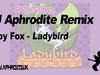 DJ Aphrodite Remix - Baby Fox 'Ladybird' (1994)