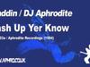Aladdin / DJ Aphrodite - Mash Up Yer Know (1994)