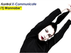 Kristin Kontrol - (Don't) Wannabe