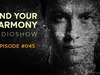 Andrew Rayel - Find Your Harmony Radioshow #045