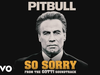 Pitbull - So Sorry (From the Gotti Soundtrack)