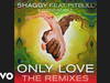 Shaggy - Only Love (Luca Schreiner Tropical House Chelsea Mix) (Audio)