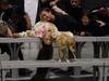 Ariana Grande - Lollapalooza (recap)