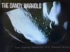The Dandy Warhols' TV Theme Song (1995)