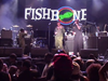 Fishbone Party At Ground Zero LIVE @AFROPUNK Brooklyn 2016