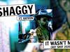 Shaggy - It Wasn't Me (Hot Shot 2020) (feat. Rayvon)