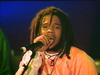 Stephen Marley - One Good Spliff | Ziggy Marley & the Melody Makers LIVE! (2000)