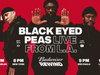 Black Eyed Peas - Budweiser Rewind - LIVE from Los Angeles