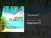 Ziggy Marley - Sunshine (RUSL Remix)